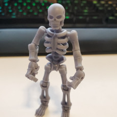 Picture of print of Build your own Skeleton. This print has been uploaded by Casey James Sullivan