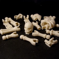 Picture of print of Build your own Skeleton.