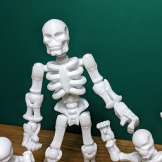 Picture of print of Build your own Skeleton. This print has been uploaded by William Hayden