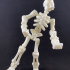 Build your own Skeleton. print image