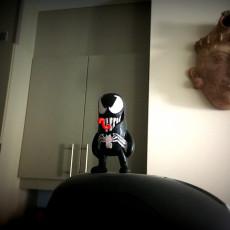 Picture of print of Mini Venom
