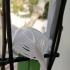 little colibri image