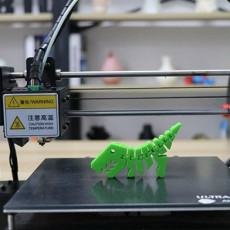 Picture of print of Flexi Raptor