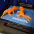 Flexi Raptor print image