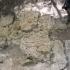 Monument 1 at La Muerta image