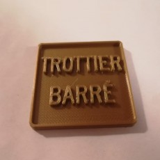 Picture of print of Trottier Barré Montreal Street Sign - 3D Design Competition submission  #3DEducation