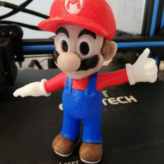Picture of print of Mario from Mario games - Multi-color