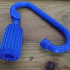 Carabiner lock hook with threaded