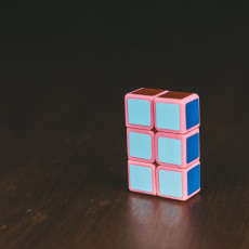 Picture of print of 1x2x3 Twisty Puzzle