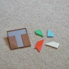 Classic  T  Puzzle