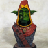Snaggle The Wise - Goblin Hero print image