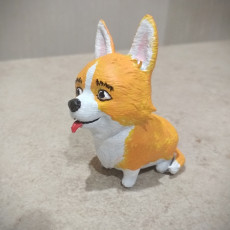 Picture of print of Corgi