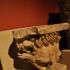 Lionhead gargoyle from the Sanctuary of Jupiter Heliopolitanus image