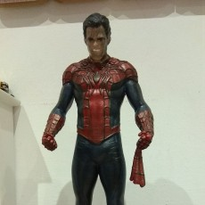 Picture of print of Spider-Man/Peter Parker This print has been uploaded by Alfredo Marchese Iezza