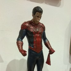 Picture of print of Spider-Man/Peter Parker