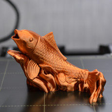 Picture of print of Carp
