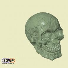 Celtic Skull (Hollow)