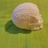 Celtic Skull (Hollow) image