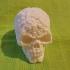 Souls Skull (Hollow) image