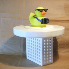 3  Pool Chlorinatior with Tourist Duck Lid