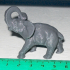 Elephant print image