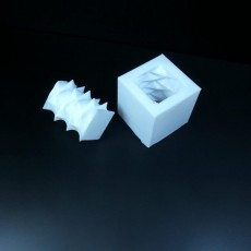 Picture of print of Square Bi-Directional Screw