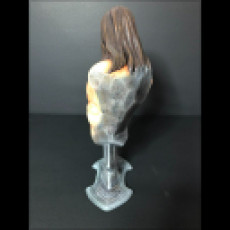 Picture of print of Conan the Barbarian bust