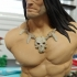 Conan the Barbarian bust print image