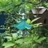 Little Bird Feeder Air Temple image