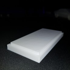 Picture of print of Pocket Puzzle