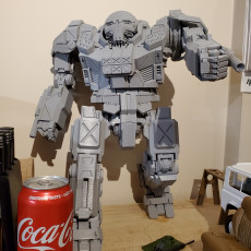 Picture of print of MWO Atlas