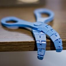 Articulated scissors