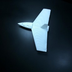 Picture of print of Throwing plane