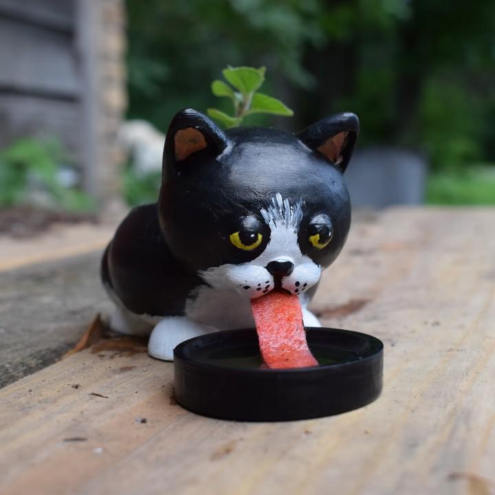 Self Water Cat Planter #Tinkerfun