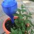 Garden Stake image