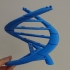 3DNA Structure Model/Puzzle image