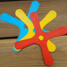Boomerang MiniQuad