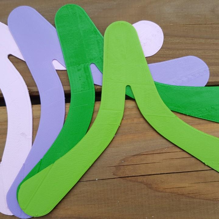 Boomerang MiniBip