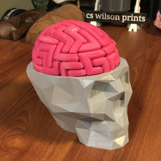 Picture of print of Dr. Brain Breaker