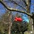 """4"""" PVC Pipe Bird House Door image"""