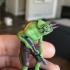 Chameleon with gun image