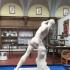 Borghese Gladiator image