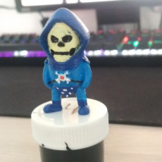 Picture of print of Mini Skeletor - Masters of the Universe