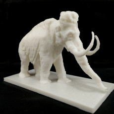 Picture of print of Mammoth