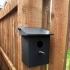 Raspberry Pi Bird Box image