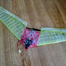 Flying Wing with FPV