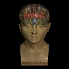 Phrenological Glazed Head