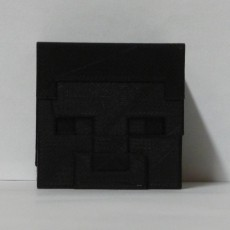 Picture of print of Steve's head