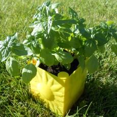Sunny Self-Watering Planter