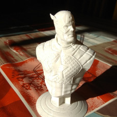 Picture of print of Captain America bust